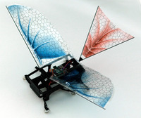 Winged Robots Hint at the Origins of Flight - ScienceNOW | Creating the Future | Scoop.it