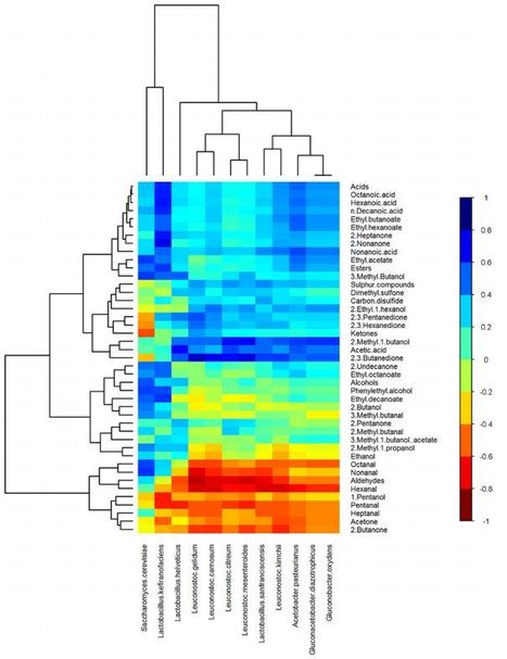 Microbial Succession and Flavor Production in the Fermented Dairy Beverage Kefir | Plant pathogenic fungi | Scoop.it