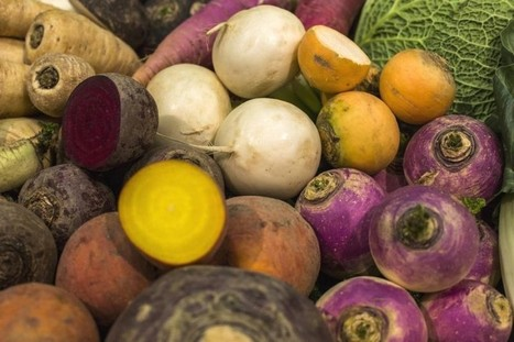Netherlands is country with most plentiful, healthy food - Oxfam   Sustain Our Earth   Scoop.it