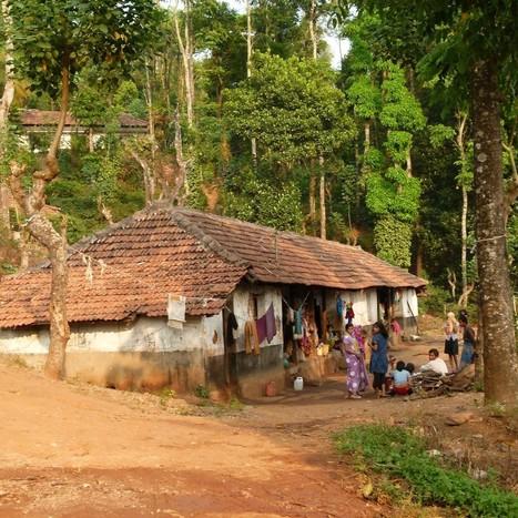 Balur Estate, pura vida en Karnataka. | Aventura en India | Scoop.it