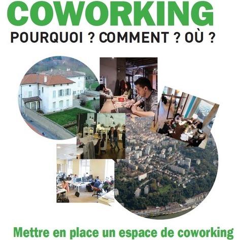 Ressources de la prospective territoriale et économique du Grand Lyon | Millenaire 3 | Du système D au collaboratif | Scoop.it