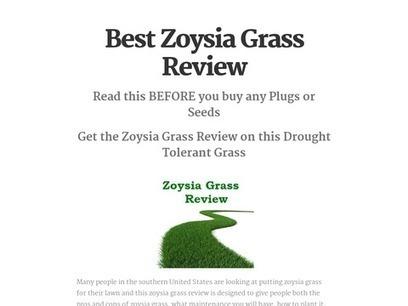 Best Zoysia Grass Review | Zoysia Grass Plugs Review | Scoop.it
