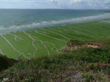 La malédiction des phosphates : dans les coulisses polluées de l'agriculture chimique | Questions de développement ... | Scoop.it