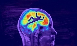 Can a brain scan uncover your morals? | the plastic brain | Scoop.it