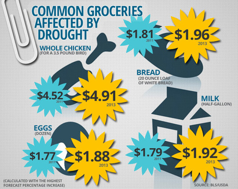 Why Your Groceries May Be More Expensive in 2013 [Infographic] | Food+Tech Connect | Food+Tech | Scoop.it