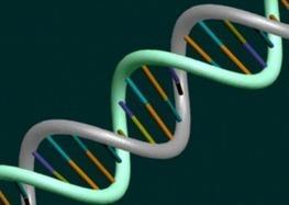 Are Police Building a Massive DNA Database? | | AlterNet | Marketing connecté - Stratégies d'influence autour des médias sociaux | Scoop.it