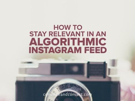 How to Stay Relevant in an Algorithmic Instagram Feed | Business Development | Scoop.it