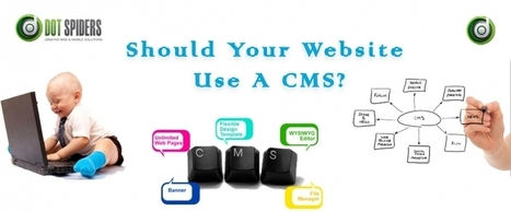 Should Your Website Use A CMS? | What is Search Engine Optimization? | Scoop.it
