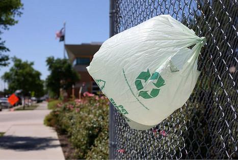 Francia prohibirá las bolsas de plastico en el 2016 - Noticias de ecologia y medio ambiente | EcoAgroPaisaje | Scoop.it