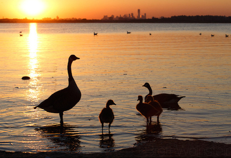 The 10 Best Places To Enjoy The Outdoors In NYC | Outdoors & Nature | Scoop.it