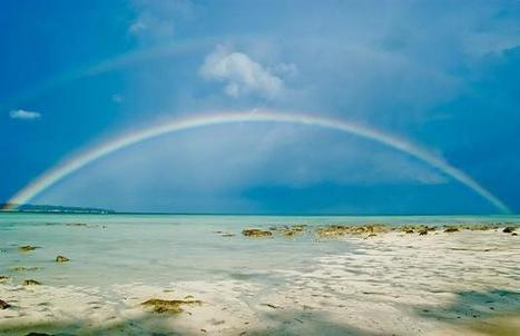 Top Beaches of Andaman   Andaman Travel Guide   Scoop.it