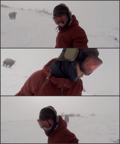 'Snowboarder Girl' Chased by Bear | MOVIES VIDEOS & PICS | Scoop.it