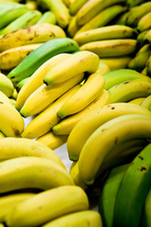 No slipping up: Banana proteome unpeeled using peptide libraries - spectroscopyNOW.com | Plant Genomics | Scoop.it