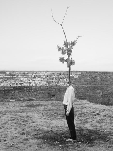 Tree People de Marko Prelic | Art & design. | Scoop.it