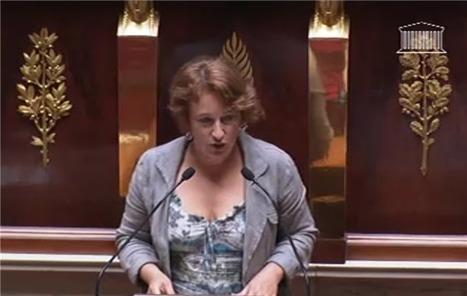 Une députée souhaite l'interdiction du vote électronique | Libertés Numériques | Scoop.it
