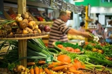 Dynamiques de développement des systèmes agricoles et alimentaires biologiques | AGRONOMIE VEGETAL | Scoop.it