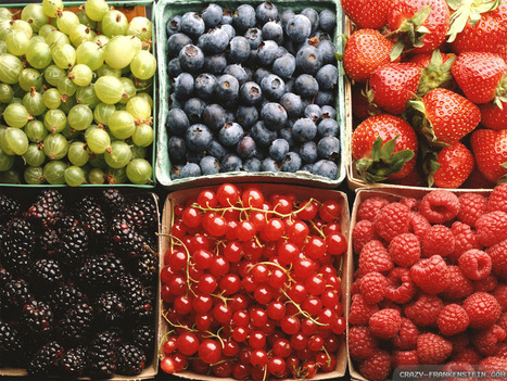 Why You Should Eat #Fruit Every Day No Matter What #Health #socialmedia | Limitless learning Universe | Scoop.it