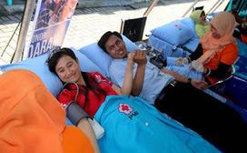 Inilah Manfaat Luar Biasa Donor Darah   Toko Obat Herbal Jelly Gamat dan Ace Maxs   Health   Scoop.it