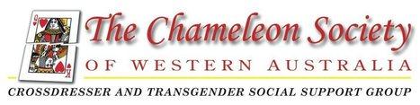 Diethylstilbestrol major Cause of TransGender? Survey   Des and gender identity   Scoop.it