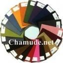 О компании   | Chamude® | Chamude | Scoop.it