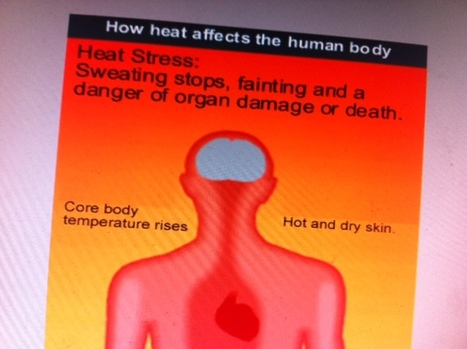 Extreme Heat Can Be Very Dangerous For Your Health!!!! | Achieving Health and Wellness | Scoop.it