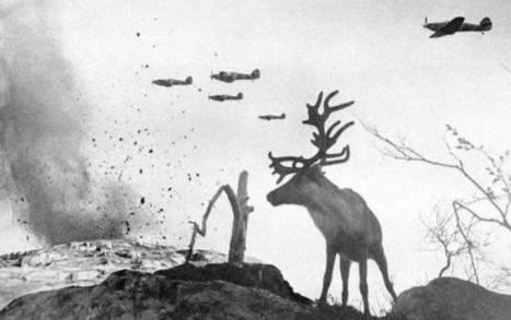 Les grands moments de l'Histoire en 20 images | Les bons articles. | Scoop.it