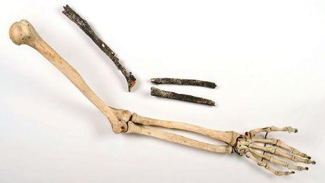 Une découverte archéologique majeure en Normandie | articles Préhistoire | Scoop.it