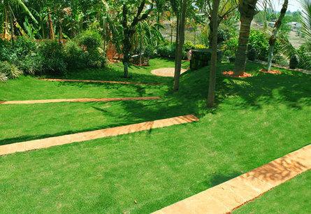 India Art n Design inditerrain: Monsoons and Landscaping | India Art n Design - Creativity, Education & Business | Scoop.it