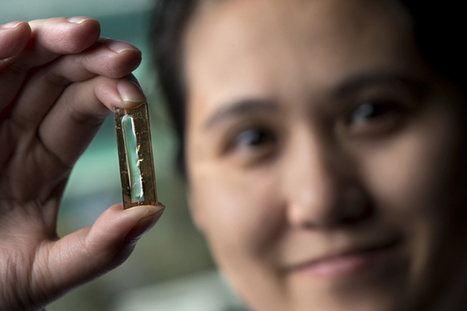Scientists can now make lithium-ion batteries last a lifetime | LibertyE Global Renaissance | Scoop.it