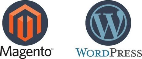 Magento vs. Wordpress for eCommerce Website Design Melbourne | Newpath WEB | Scoop.it