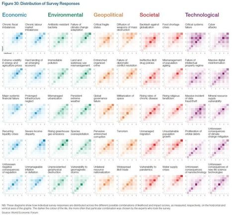 Visualizing Global Risks 2013 | #dataviz #risk | e-Xploration | Scoop.it