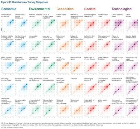 Visualizing Global Risks 2013 | #dataviz #risk | History 2[+or less 3].0 | Scoop.it