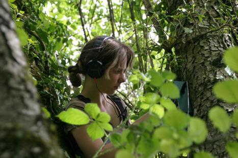 La biodiversité sur écoute | Ecology view | Scoop.it