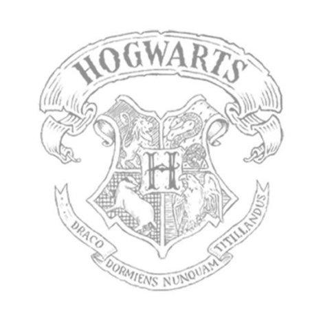 Hogwarts School of Witchcraft & Wizardry | Now Enrolling | Curiositats | Scoop.it