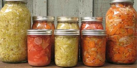 5 Health Benefits of Probiotics | zestful living | Scoop.it
