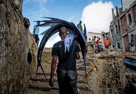 Économie bleue en Afrique : des ressources naturelles très disputées - The Conversation | CAPLP lettres histoire : ressources pour les questions au concours | Scoop.it
