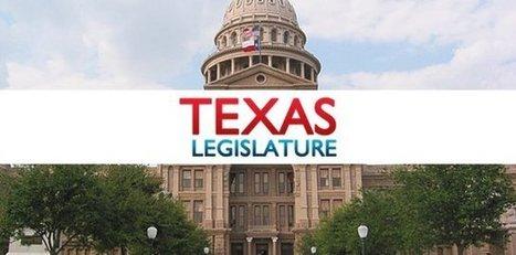 Lawmaker report, bill: treat 17-year-olds as juveniles - San Angelo Standard Times | Dallas Criminal Defense Lawyer Robert Guest- (972) 564-4644 | Scoop.it