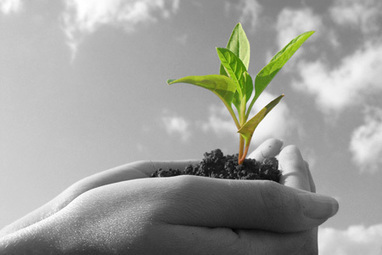 Why Small Businesses Need Great Leadership - TanveerNaseer.com   Mediocre Me   Scoop.it