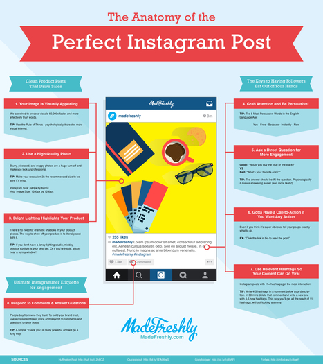 8 Tips for Creating the Perfect Instagram Post  [INFOGRAPHIC] | Instagram's Best | Scoop.it