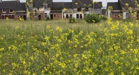 Lens : mardi, François Hollande devrait faire des annonces «historiques» pour le bassin minier - Lens (62300, Pas-de-Calais) - La Voix du Nord   Technique Histoire Enjeux contemporains   Scoop.it