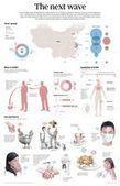 La sombra del asno: La gripe que nos viene (N7H9) | Biología y Genética | Scoop.it