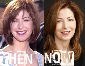 Dana Delany Plastic Surgery Before & After Photos | Celebrity Plastic Surgery | Scoop.it