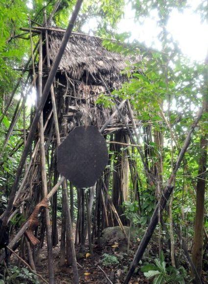 Real-Life Tarzans Found Living Deep in Vietnam's Forests | Strange days indeed... | Scoop.it