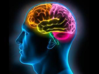 Nuestra mente no solo nos sirve para aprender | Tu Parada Digital | Educacion, ecologia y TIC | Scoop.it