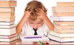 Dislessia: la difficoltà nella lettura   Mind & Brain   Psicologia, neuropsicologia e neuroscienze   Scoop.it