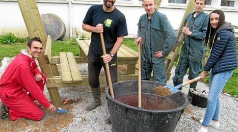 Les lycéens construisent leur lieu de vie extérieur   Le lycée agricole de Caulnes   Scoop.it