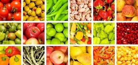 Developing and Assessing GAPs Programs in Preparation for the Food Safety ... - Food Safety Magazine | Monitoring dan Evaluasi Kinerja Pembangunan dan Pemerintah | Scoop.it