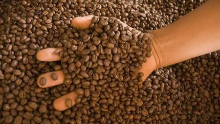 Agroexportaciones caen 25% por baja producción de café | Noticias Perú | Scoop.it