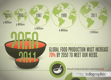 USAID | Infographic: The Global State of Agriculture | IB GEOGRAPHY The geography of Food and Health PEMBROKE | Scoop.it