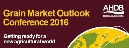 AHDB Cereals & Oilseeds : Grain Market Outlook Conference | Grain Storage Trends and Innovations Worldwide | Scoop.it
